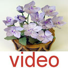 Videos of Flower making kit